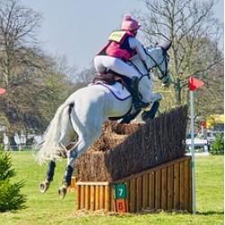 Ringe præstation og fordøjelsesproblemer hos heste