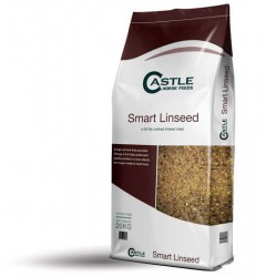 Smart Linseed