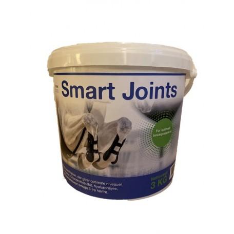 Smart Joints